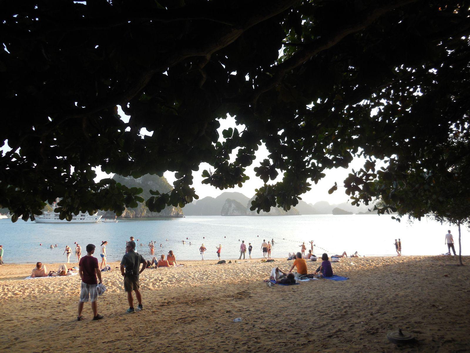 Petite plage en bordure de l'île.