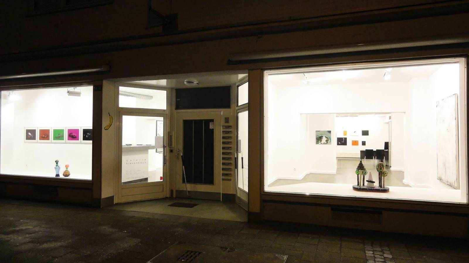 NATURE - ChangesFiveX Part Two - Vues d'expo - Galerie Biesenbach, Cologne (Allemagne)