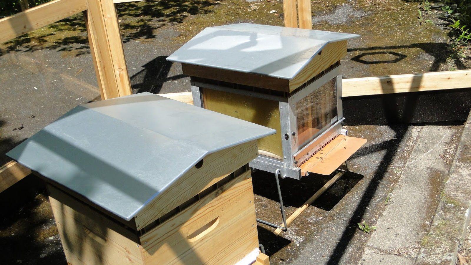 Les ruchers de la Maison de la nature