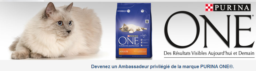 test purina pour chat