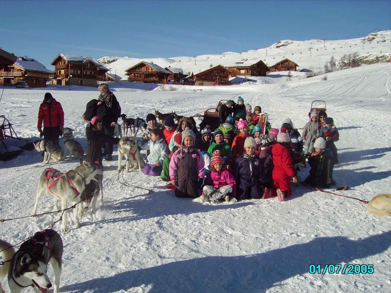 Galerie photos de la sortie chiens de traineaux