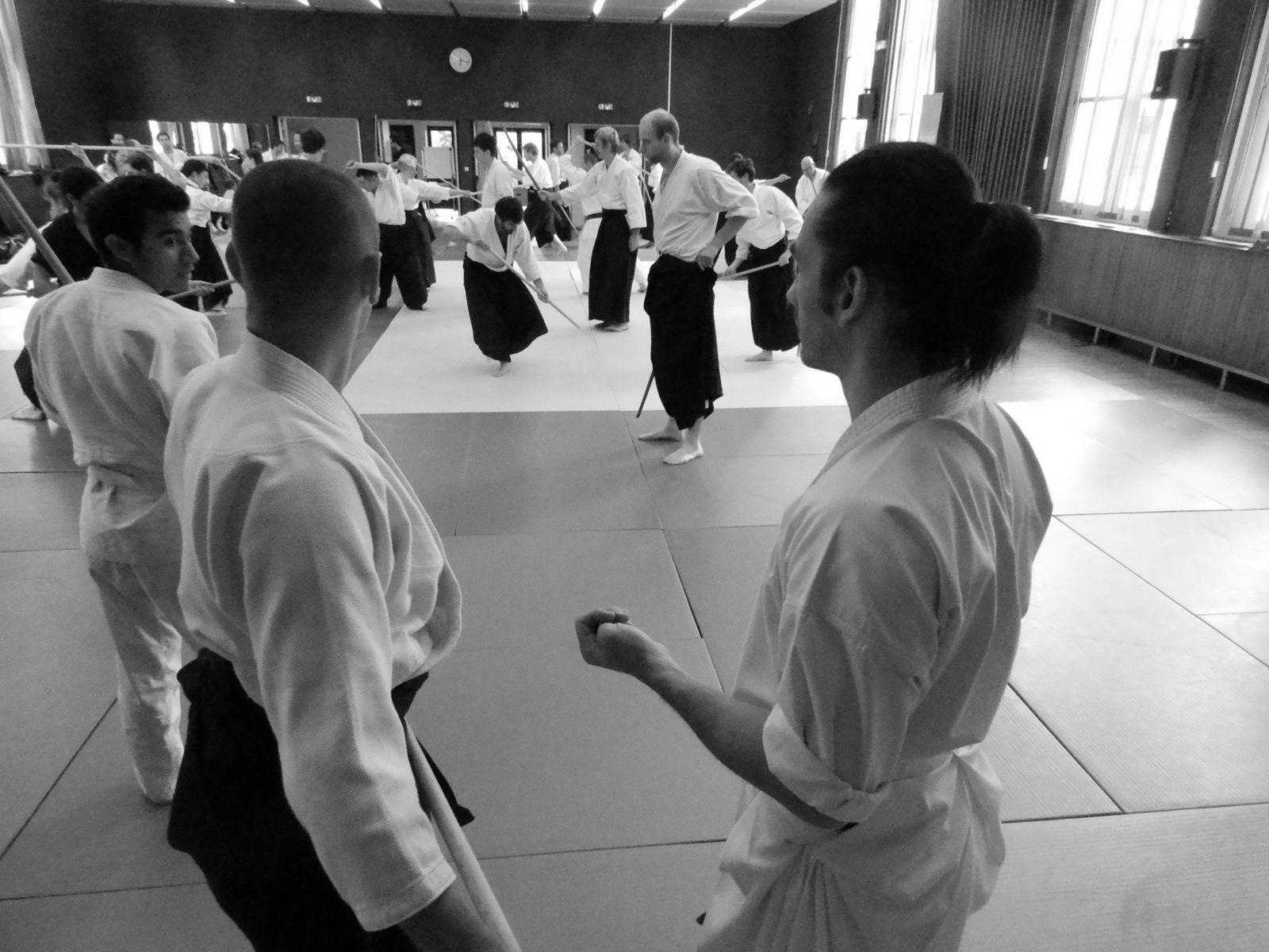 pratiquer, enseigner sous l'oeil du maître