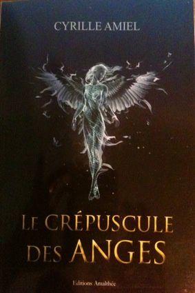 Le crépuscule des anges de Cyrille Amiel