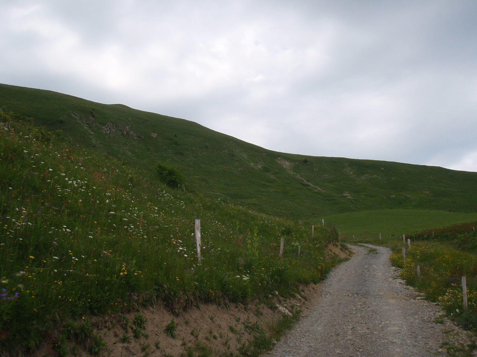 Montagne de Sulens: Depuis le Col de Plan bois