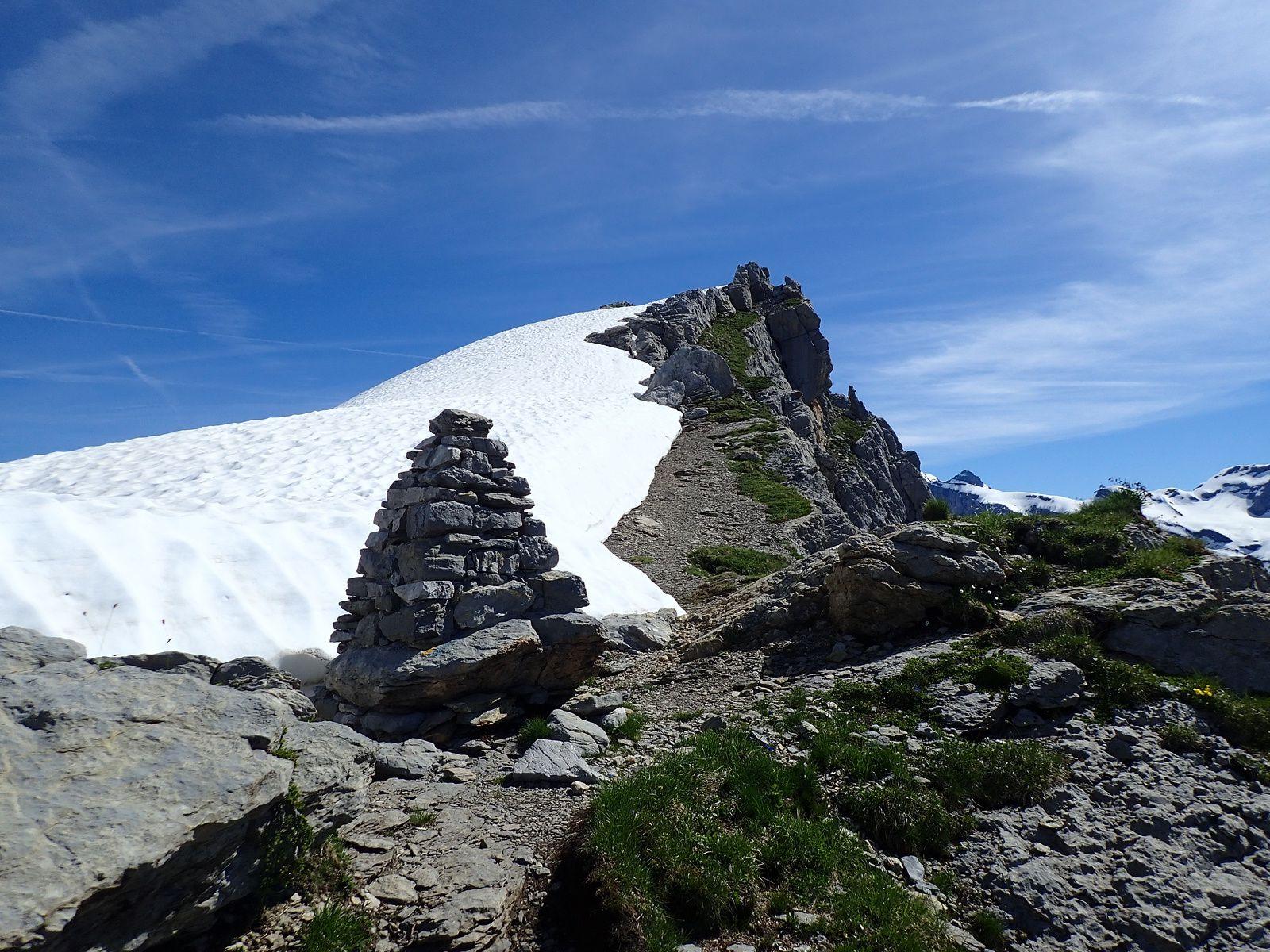Pointe de Bellegarde: Depuis la Combe de Salvadon 2/2