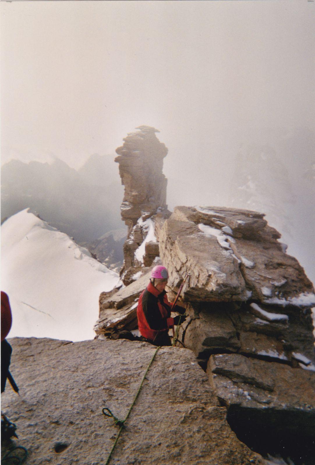 Grand Paradis: Depuis Chabot&#x3B; Glacier de Laveciau