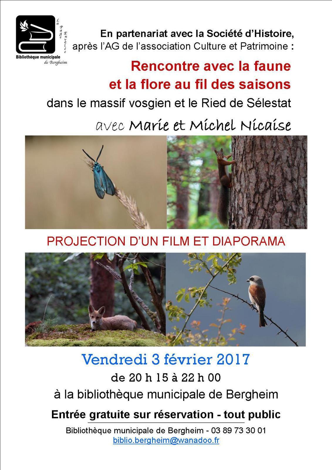 Rencontre avec la faune et la flore d'Alsace