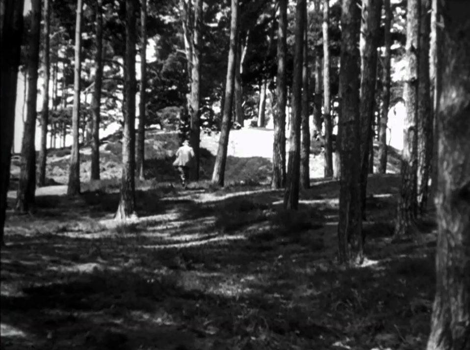 Pour donner plus d'intensité à la disparition de Miss Froy, Hitchcock multiplie les allusions. D'abord dans le compartiment à bagages, où l'on découvre que Doppo est un prestidigitateur qui fait disparaître des femmes, ensuite en faisant à nouveau disparaître Miss Froy dans la forêt. Tentant de rallier la frontière, la vieille dame s'évanouit littéralement dans le paysage, suscitant l'inquiétude d'iris qui la regardait partir. Ces rappels thématiques amplifient le thème central du film.