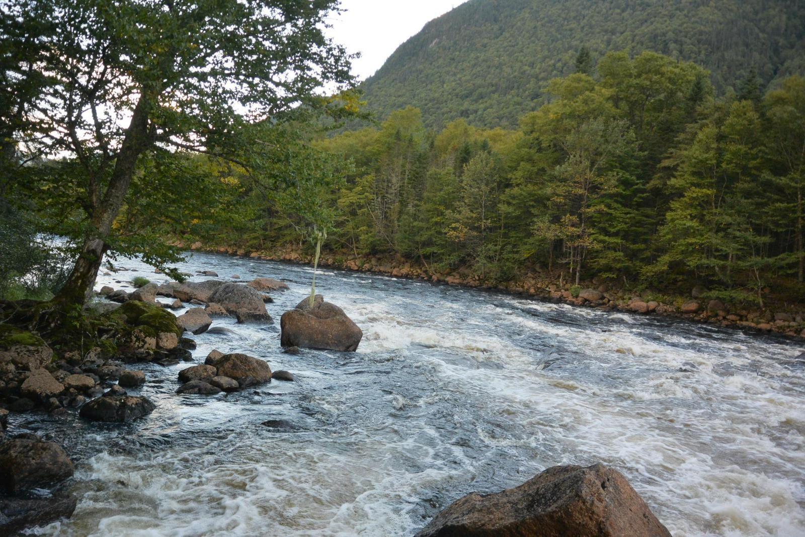 Voyage : Randonnée deans le parc de la Jacques Cartier (Canada)