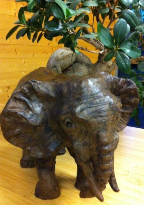 L'élèphant de Martine