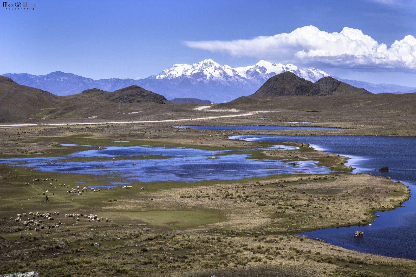 APOLOBAMBA : LAND OF KALLAWAYAS, NOMADIC ANDEAN HEALER - Bolivia