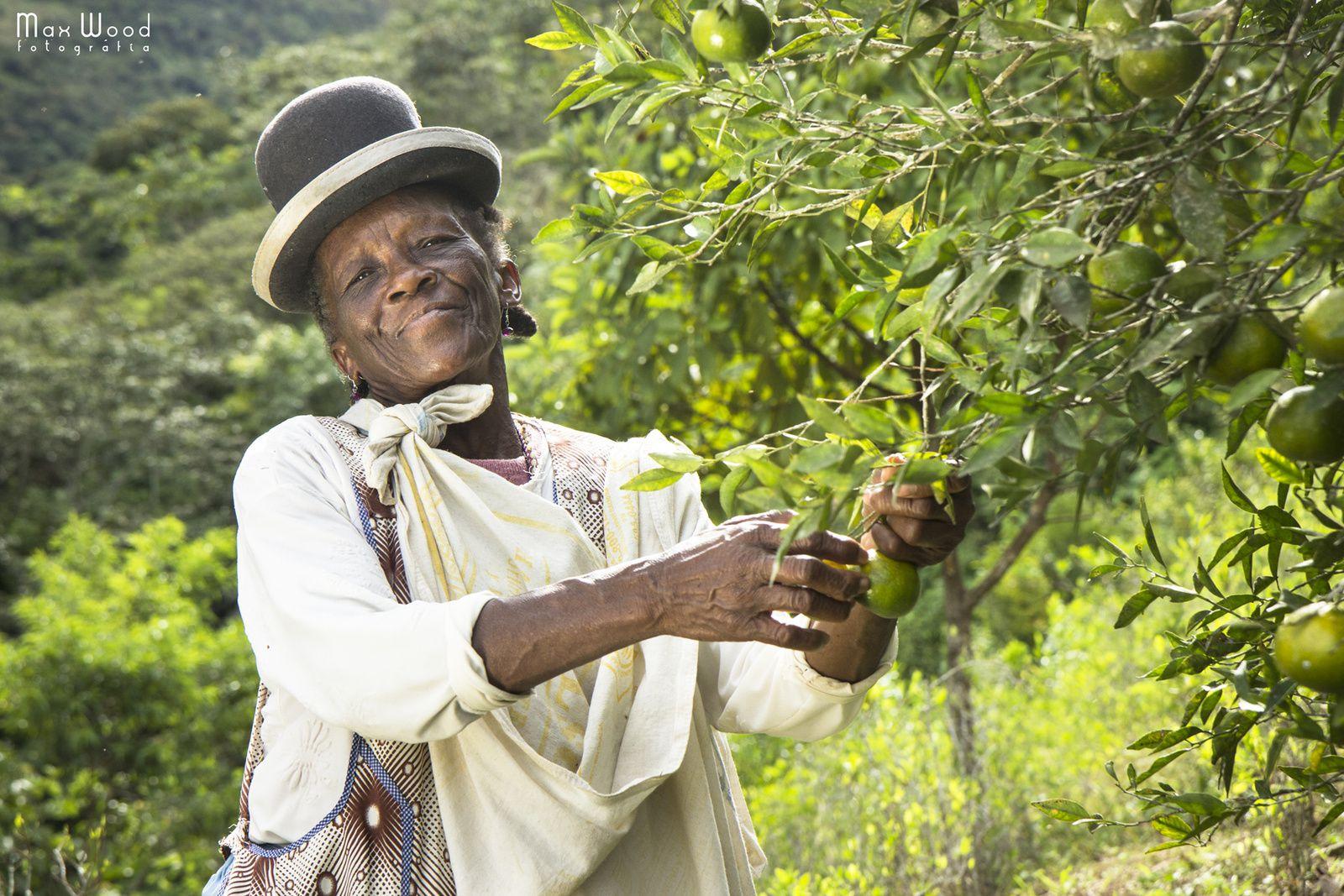 COCA FARMERS, AFRO-BOLIVIAN CULTURE - Chijchipa - Yungas region - Bolivia