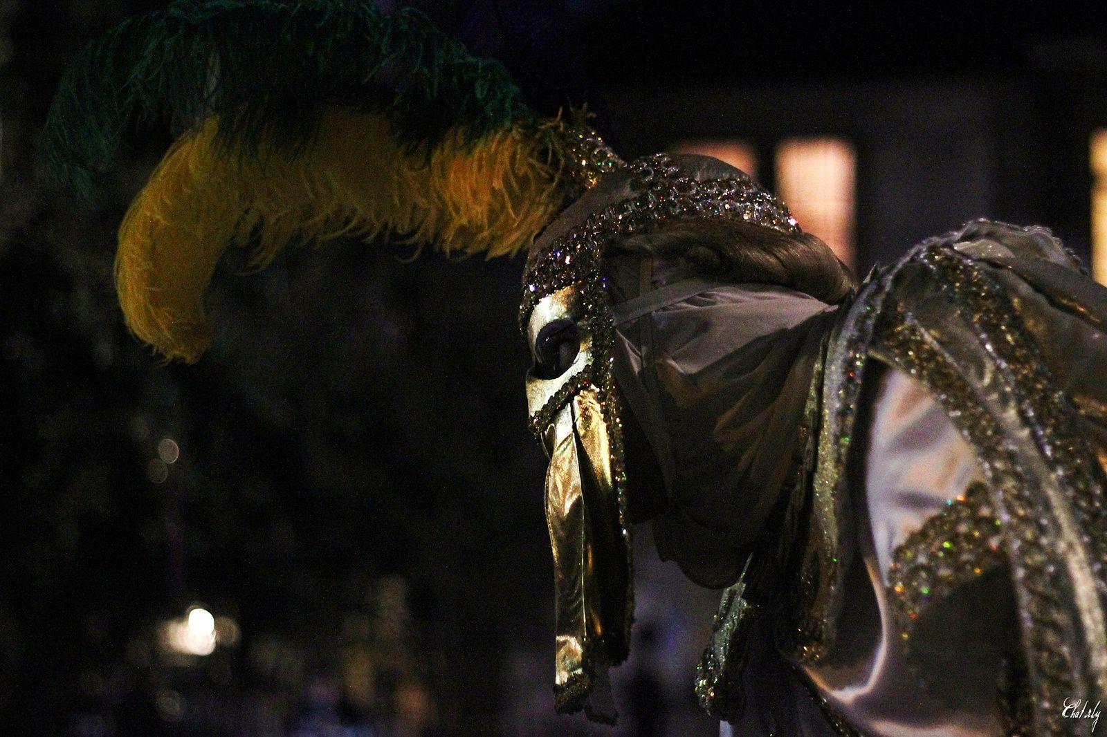 Mardi Gras season (New Orleans, LOUISIANA)