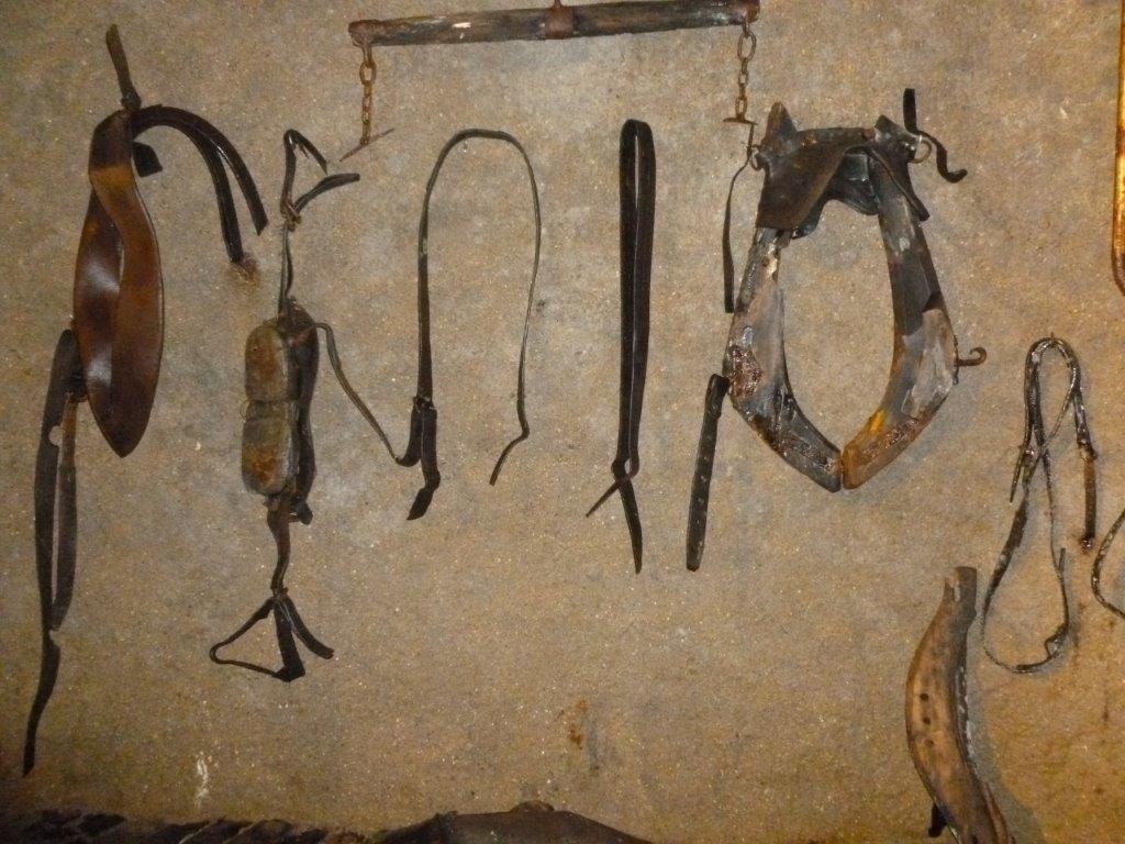 Des chevaux étaient utilisés pour travailler dans les mines.
