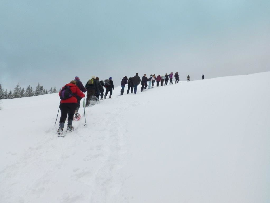 Et une ultime grimpette avant notre arrivée à l'auberge, on commençait à avoir faim alors on a coupé au plus court.