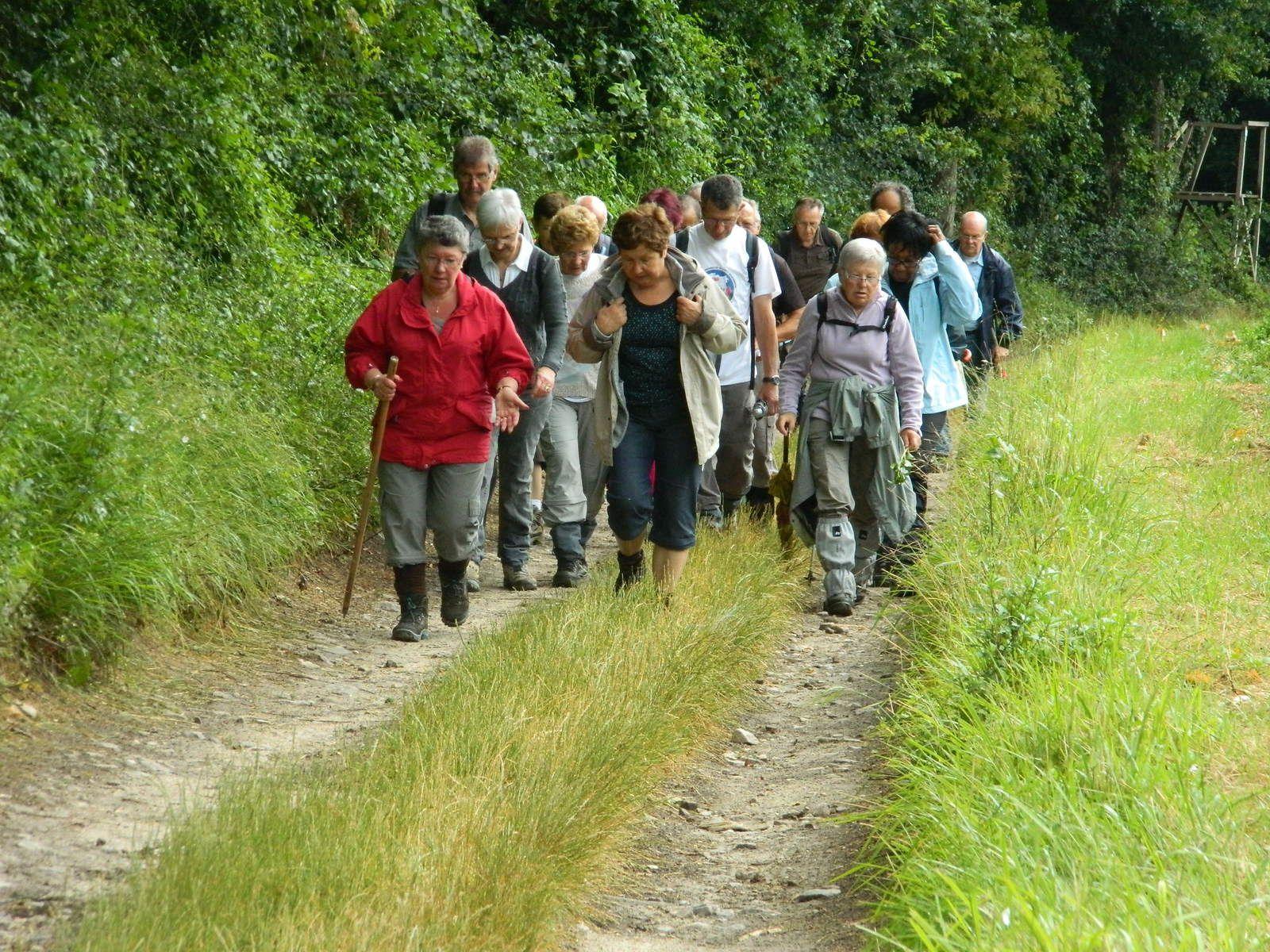 32 randoballeurs sur les sentiers dans les environs d'Orveau