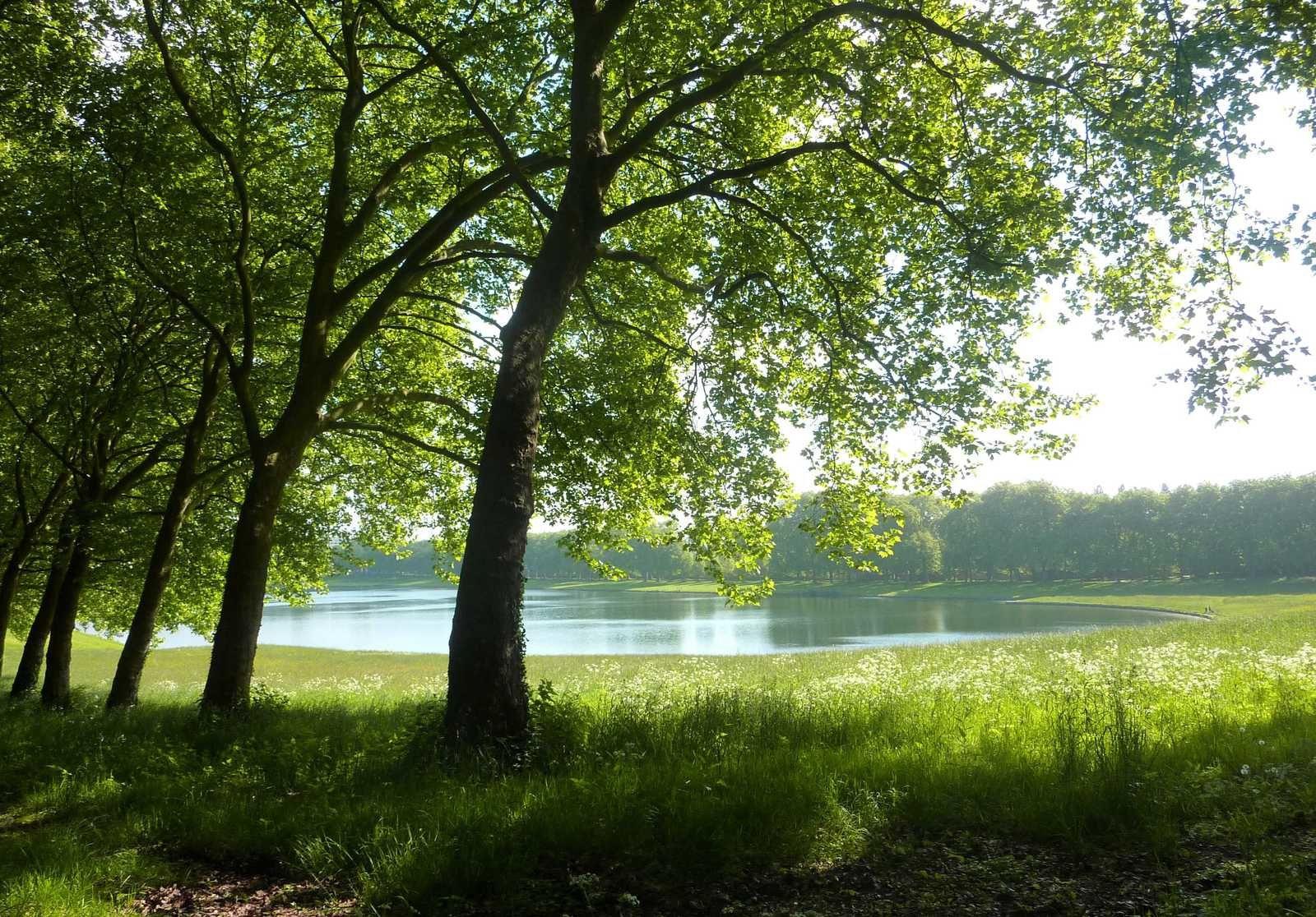 17 mai 2015 - Versailles