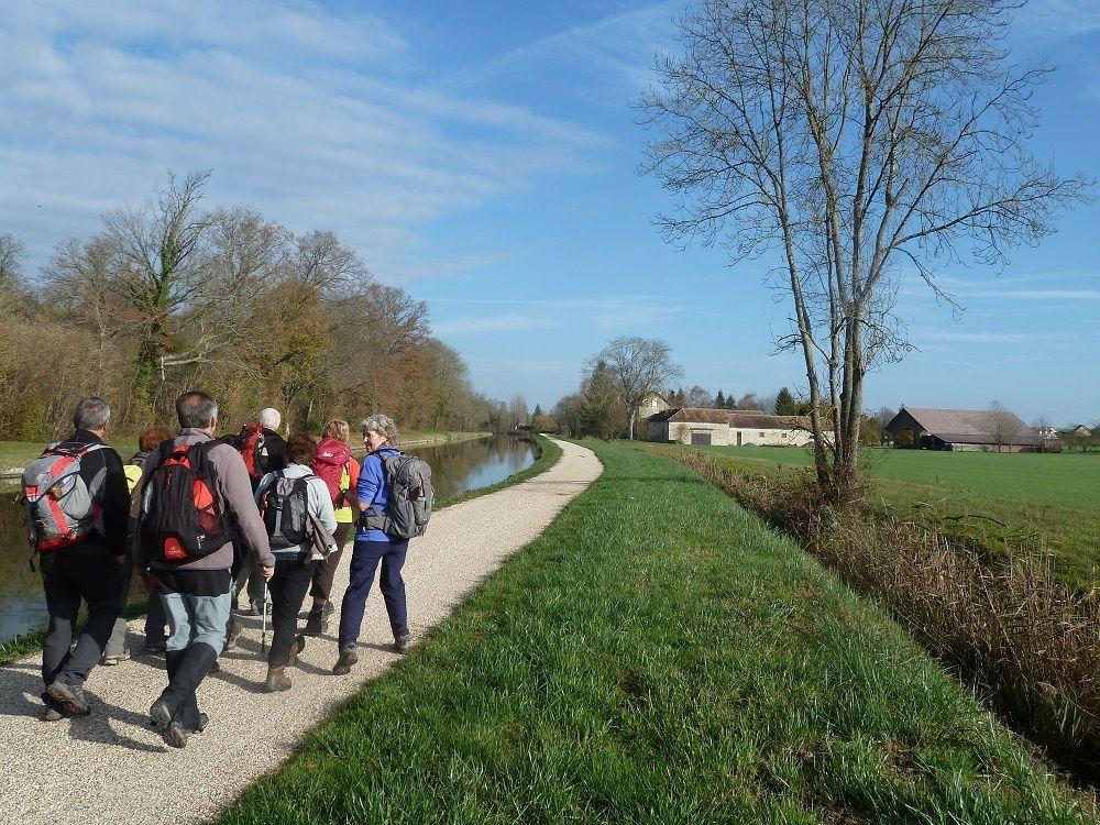 12 novembre 2015 - Du canal du Loing, aux berges du Lunain