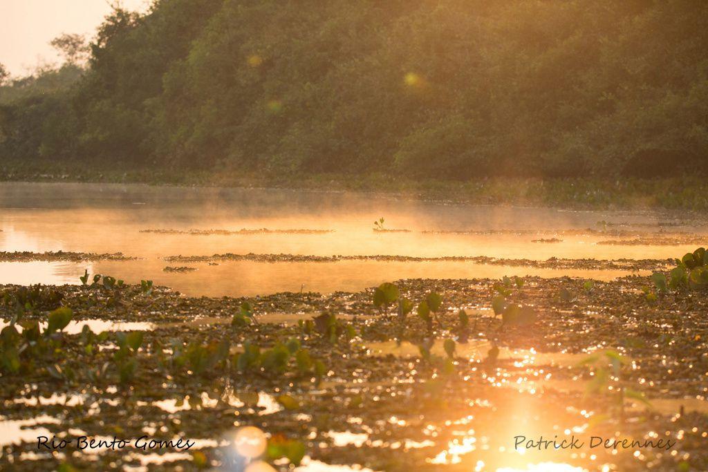 Pantanal - Rio Bento Gomes