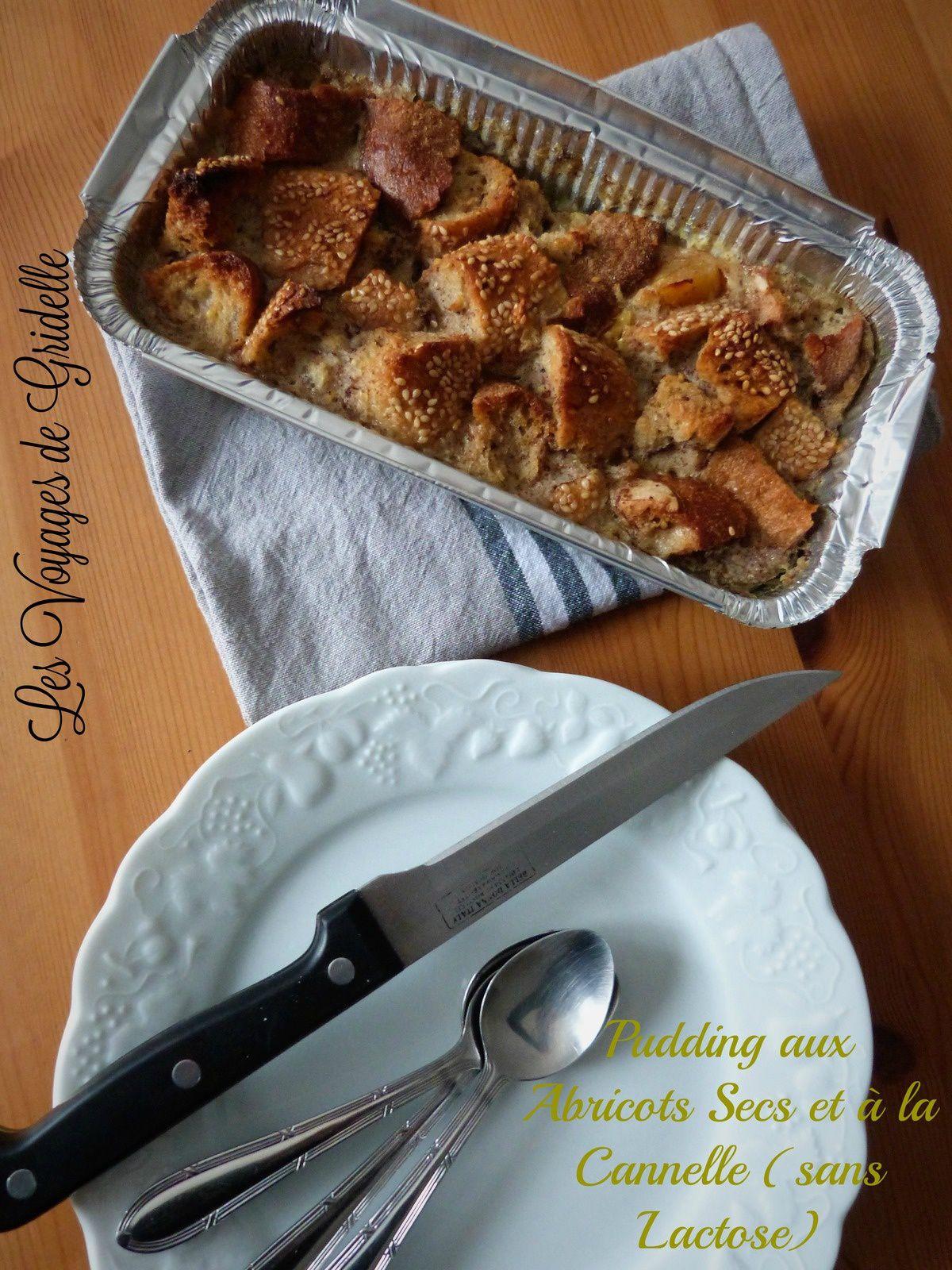 Pudding aux Abricots Secs et à la Cannelle (sans lactose) - Les Voyages de Gridelle