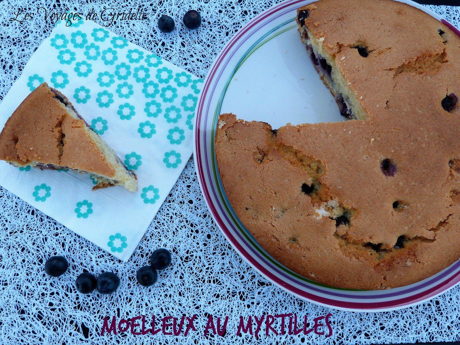 Moelleux aux Myrtilles - Les Voyages de Gridelle
