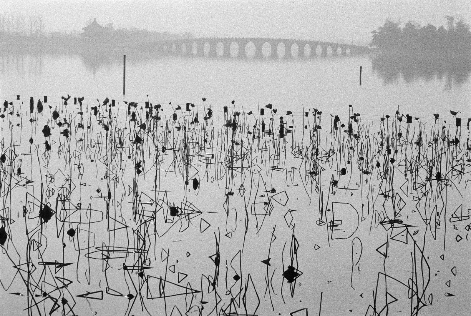 Kunming Lake, Beijing, China, 1964 - Source: www.hku.hk