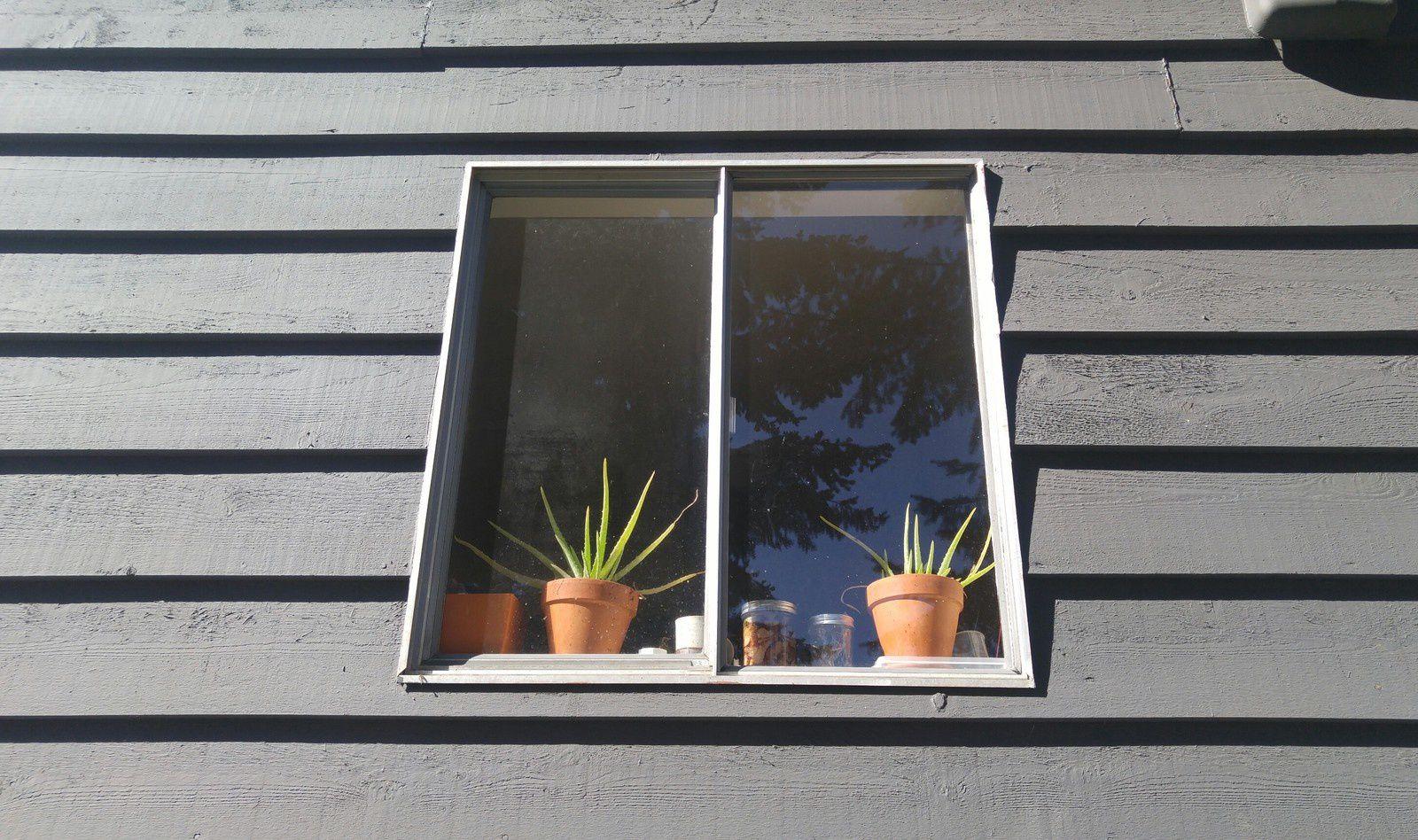 Living Room Window From Outside - April, 21st 2017 © Anne Errelis-Phillips