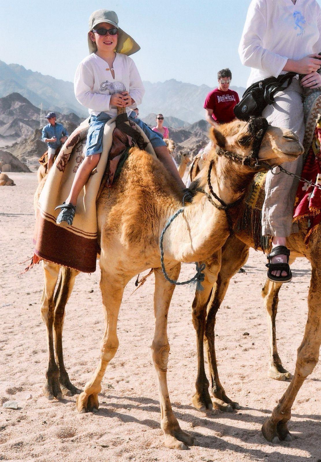 10 Dinge, die man mit Kindern in Sharm El Sheikh unternehmen kann
