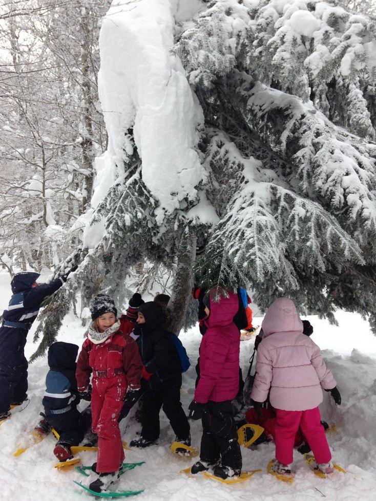 Sortie Neige à Sainte Eulalie (26 et 27 Janvier 2015)