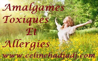 Formation Amalgames toxiques et Allergies le 28 juin