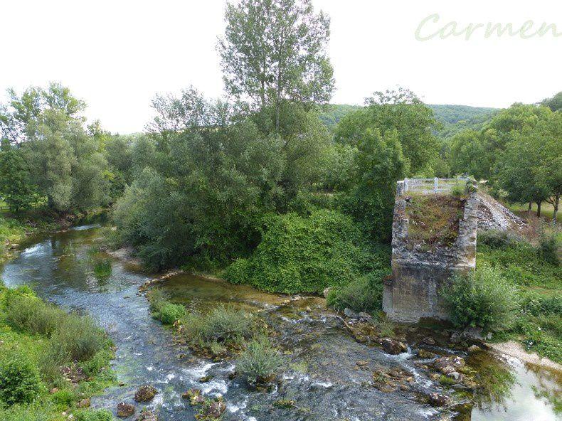 Château de Belcastel perché sur sa falaise , arbres et forêts dans la vallée de la Dordogne et le pont de l'Ouysse