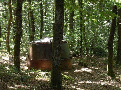 La forêt de l'Aiguille, jadis forêt royale, a toujours possédé une grande réserve de matière première avec son bois. Vivant au coeur de cette forêt, les charbonniers dormaient dans des cabanes à proximité de leurs chantiers. Les Marmites ou Charbonnières, de gros chaudrons en acier ont été utilisés pour la confection du charbon de bois. Les charbonniers les remplissaient de bois et les enflammaient. Ces marmites ne sont plus utilisées depuis 1958. Une commission de l'Office de Tourisme de Les Cammazes, composée de défenseurs du petit patrimoine local, est en train de travailler à leur restauration.