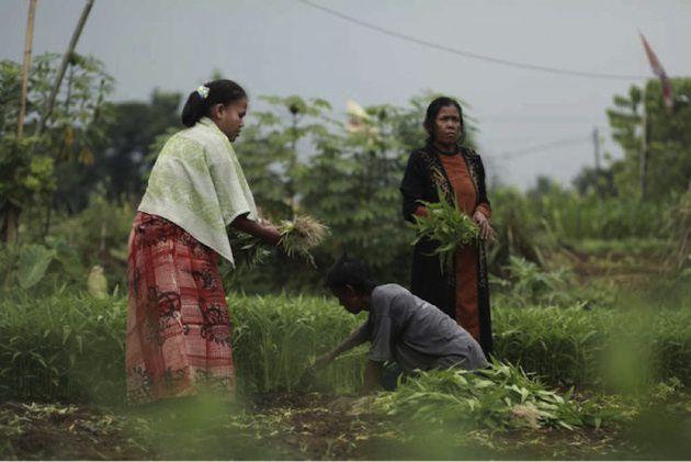 Les partenariats de développement du CCFD-Terre solidaire face aux appels à une vie sobre