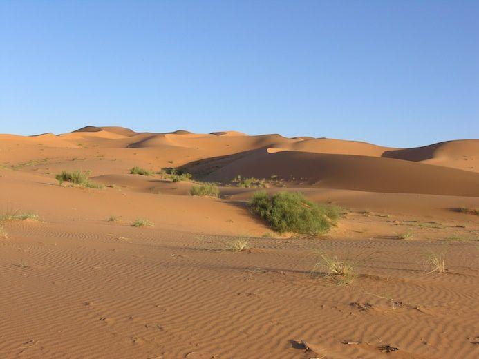il n'est pas nécessaire de se retirer dans un lointain désert, le calme de sa chambre suffit