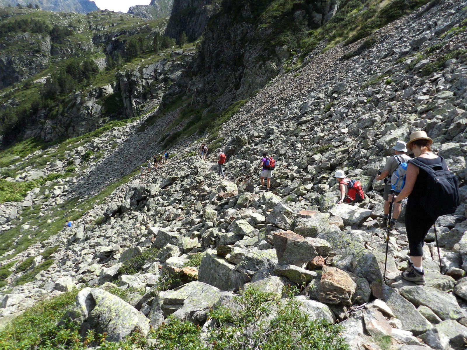un passage au milieu des pierres et des myrtilles