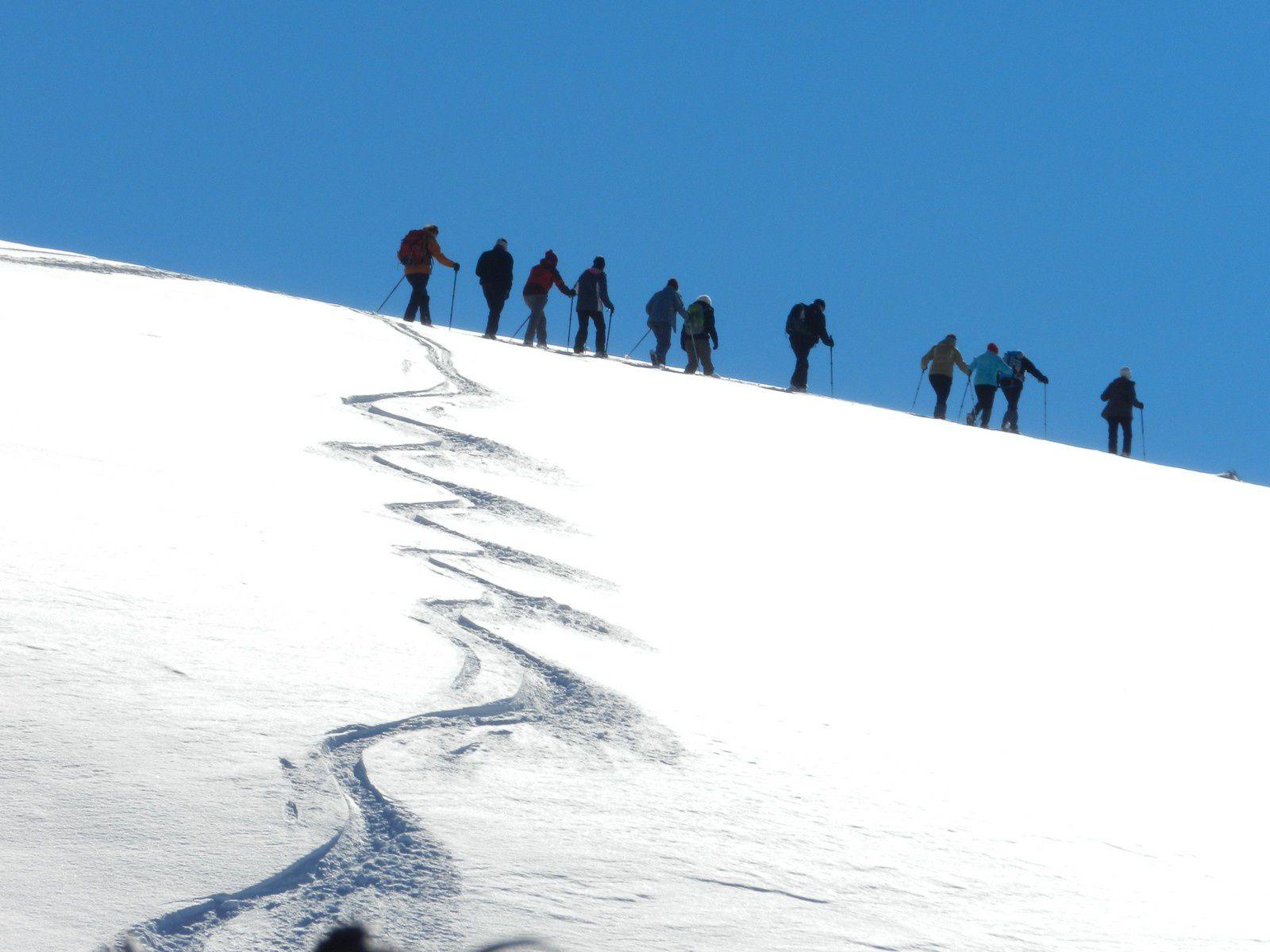 le groupe se scinde en deux et les plus jeunes vont à l'altiport, voir les skieurs arriver en avion sur la naige