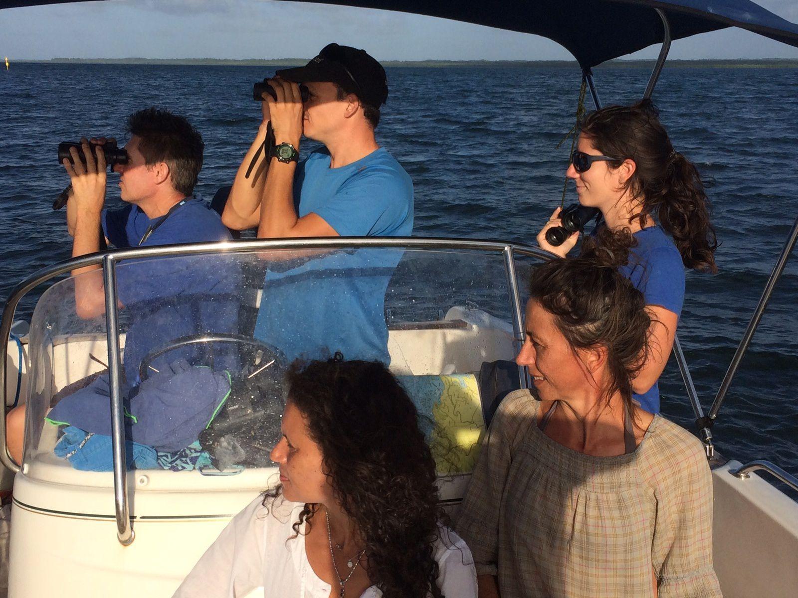 Fabienne, Nathalie, Pauline, Baptiste et Régis mobilisés pour la sortie nautique de L'ASFA consacrée au suivi des colonies nicheuses de pélicans bruns. C'est aussi l'occasion de réaliser de belles observations naturalistes (Photo: B. Ibéné)