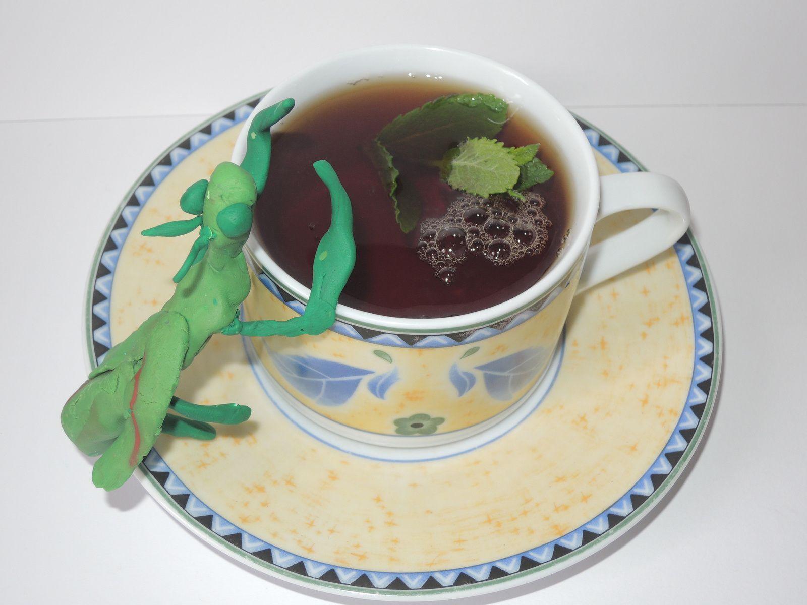 Thé à la mante religieuse