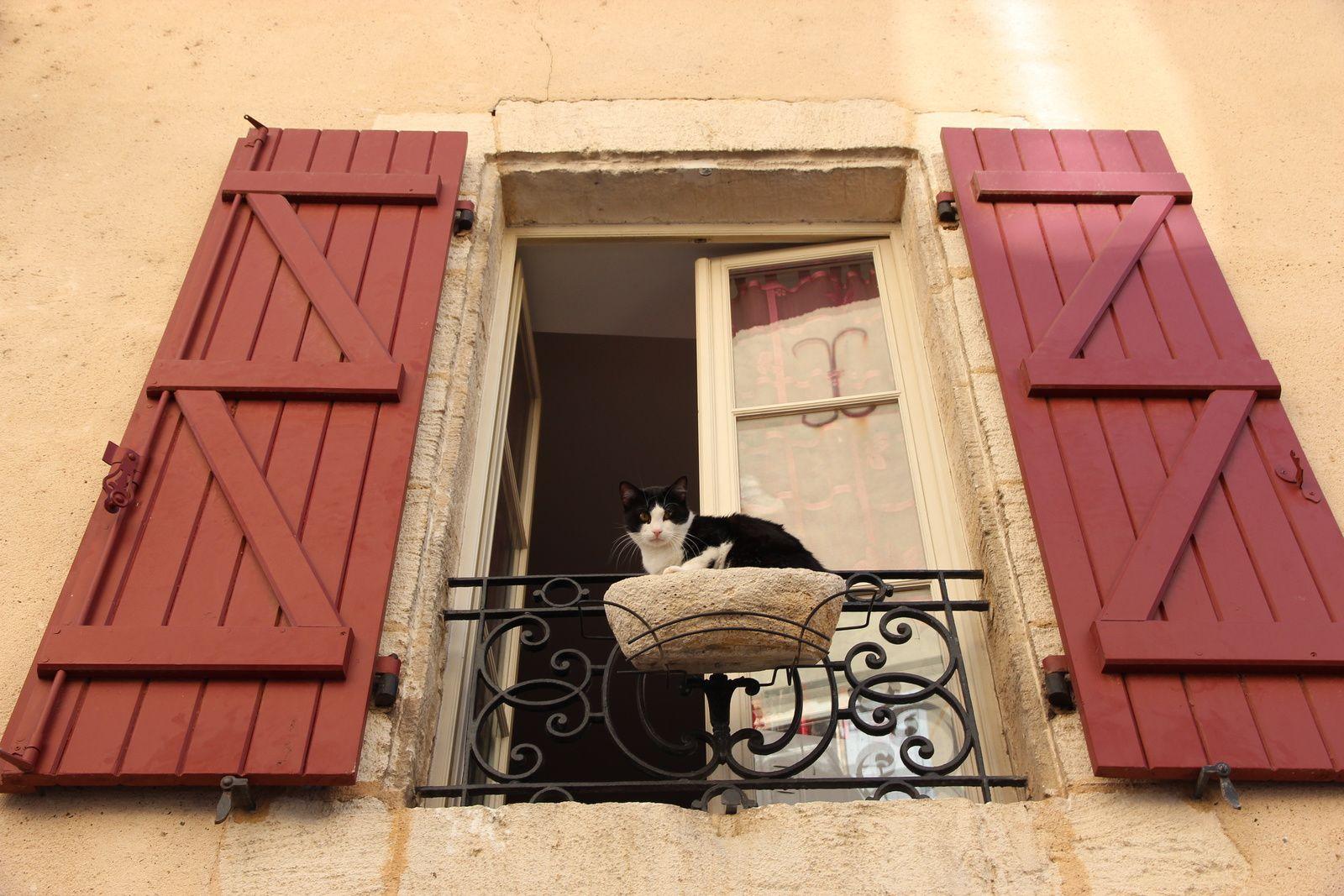 Dans les rues de Saint-Sever
