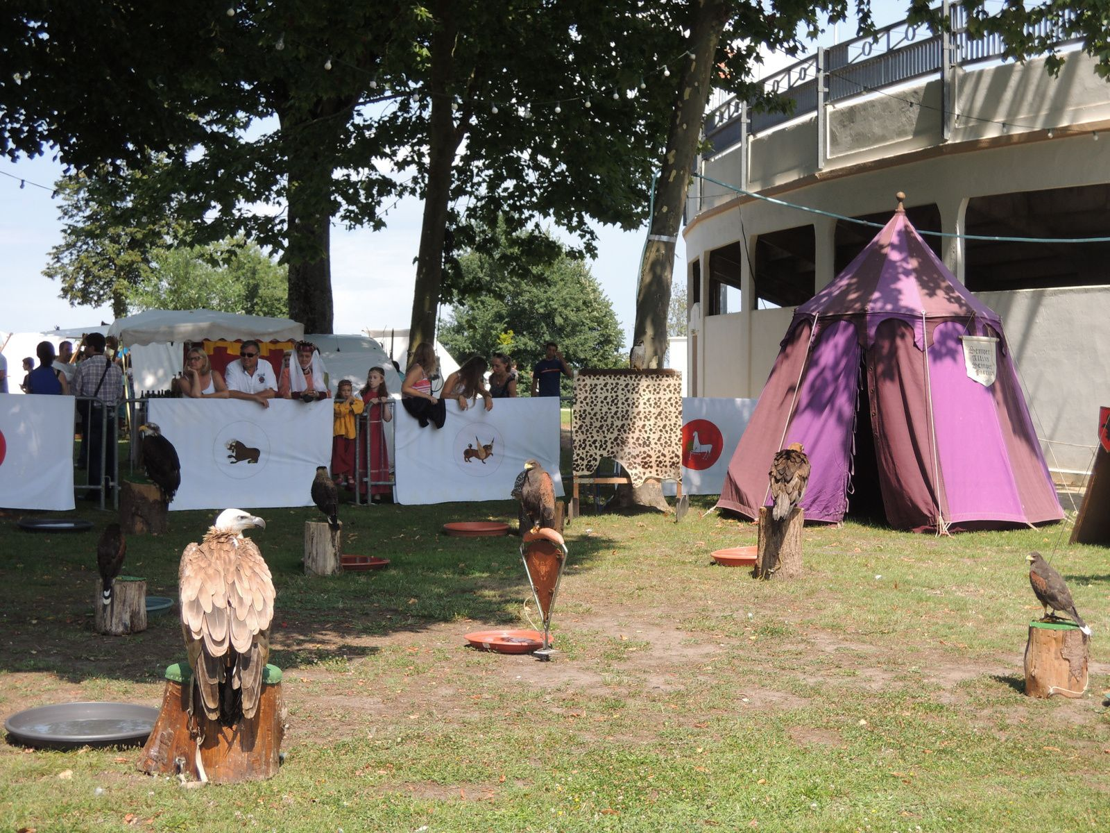 Les Vasconiales, fête médiévale