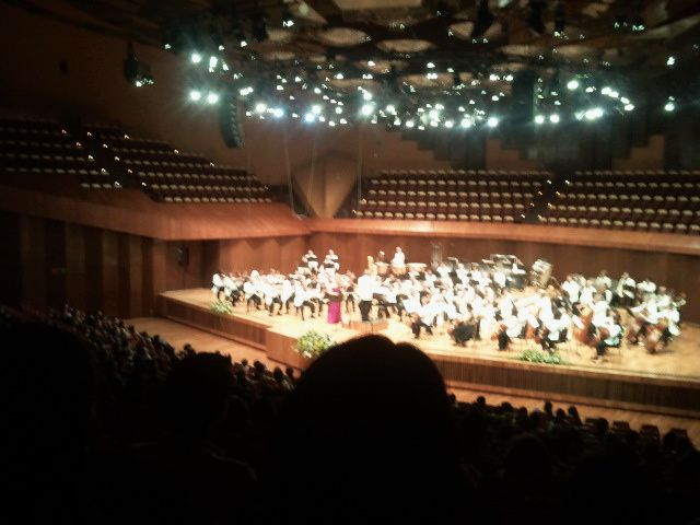 Symphonico del EMex sala Nezahualcoyotl:si nos cura musica de la locura humana