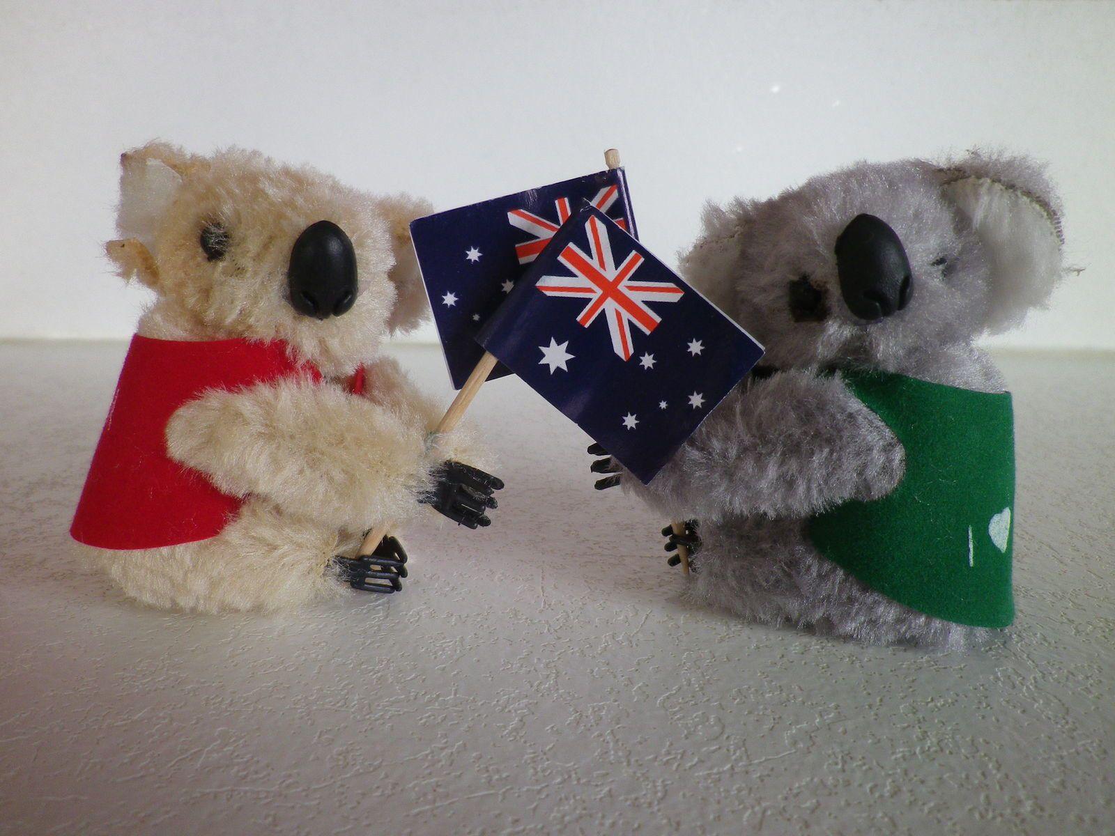 merci à Moomic et à sa femme (qui venaient d'Australie) pour leurs petits koalas trop mignons ^_^ !