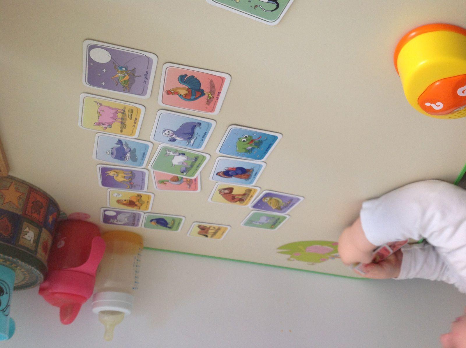 Grâce à une super collègue qui m'a trouvé ce jeu que je cherchais depuis un moment nous avons pu jouer avec M 2 ans, elle aime beaucoup , en appuyant sur le dessus du jeu le crois d'un animal jaillit et nous devons le retrouver dans les cartes étalées devant nous, il y a bien sûr d'autre façon de jouer que nous étudierons plus tard