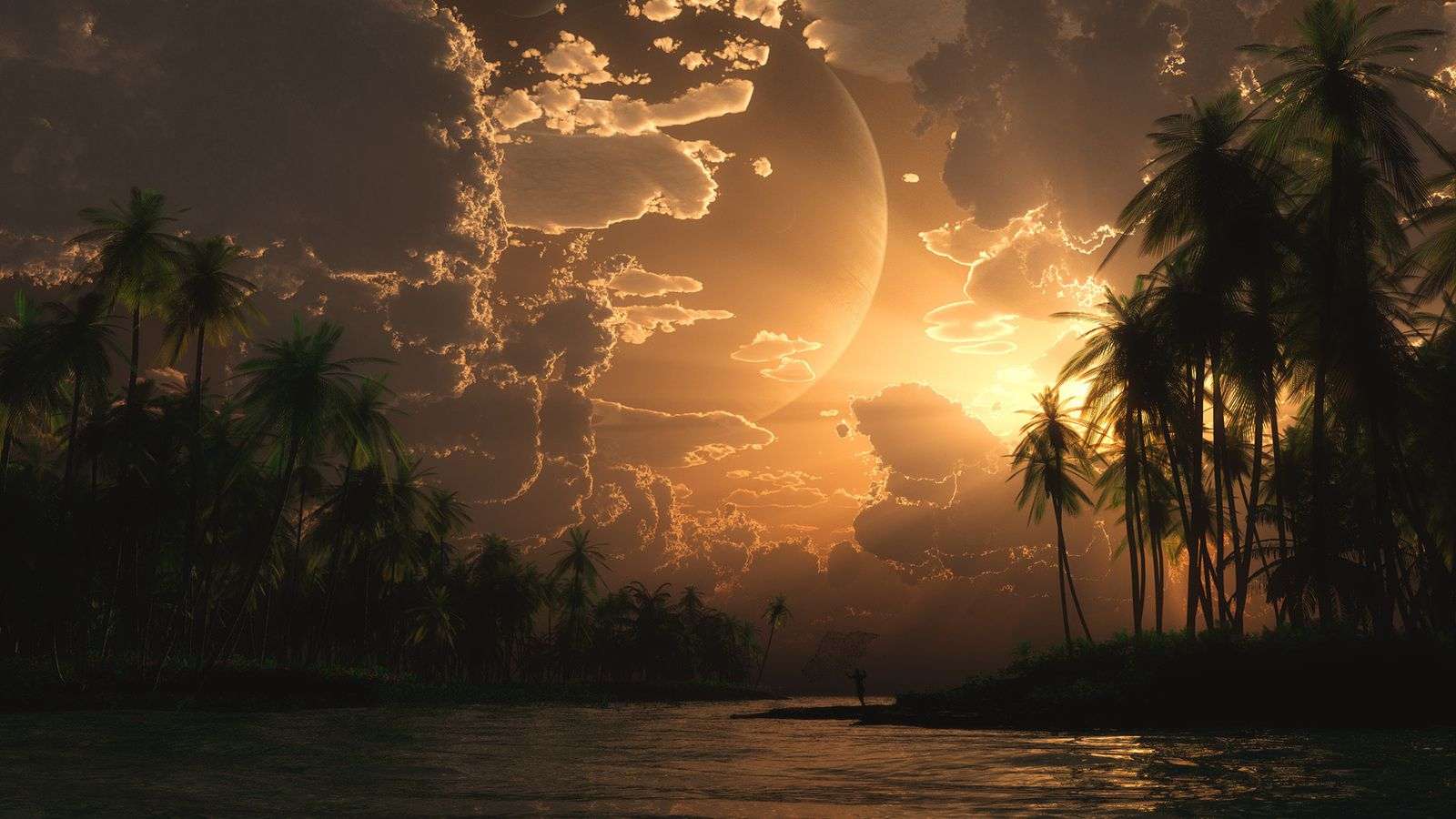 Paysage - Palmier - Tropical - Nature - Wallpapers