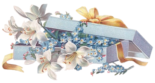 Cadeau - Fleurs - Render - Tube - Gratuit