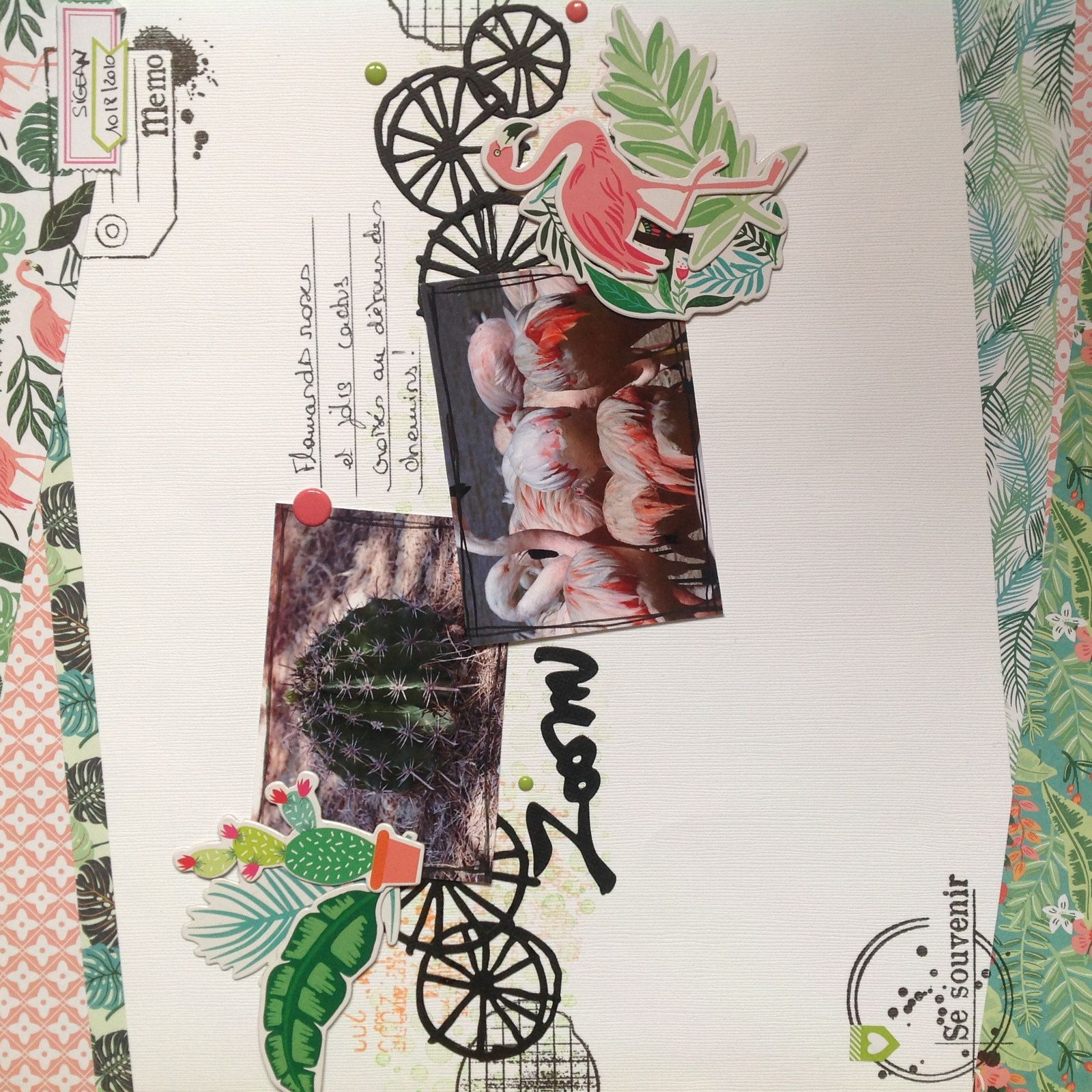 Scrapbooking - Flamands Roses