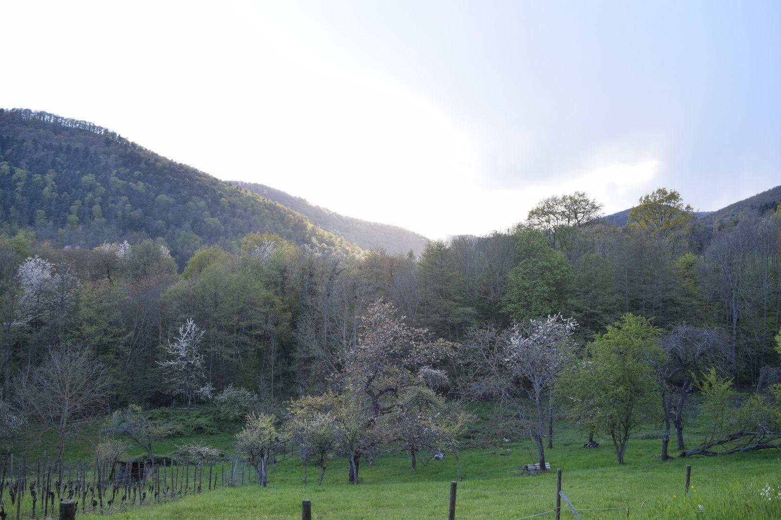La Tite Vadrouille en Alsace