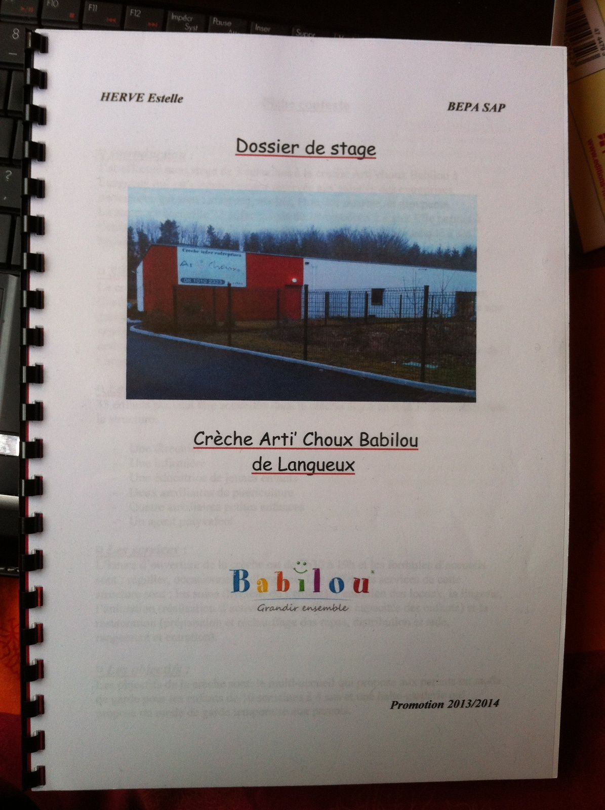 rapport de stage ehpad bac pro