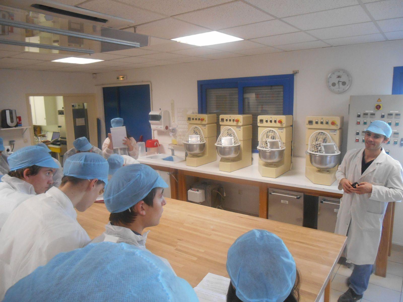 Viennent ensuite les essais de panification qui déterminent les réactions physiques et techniques de la pâte.