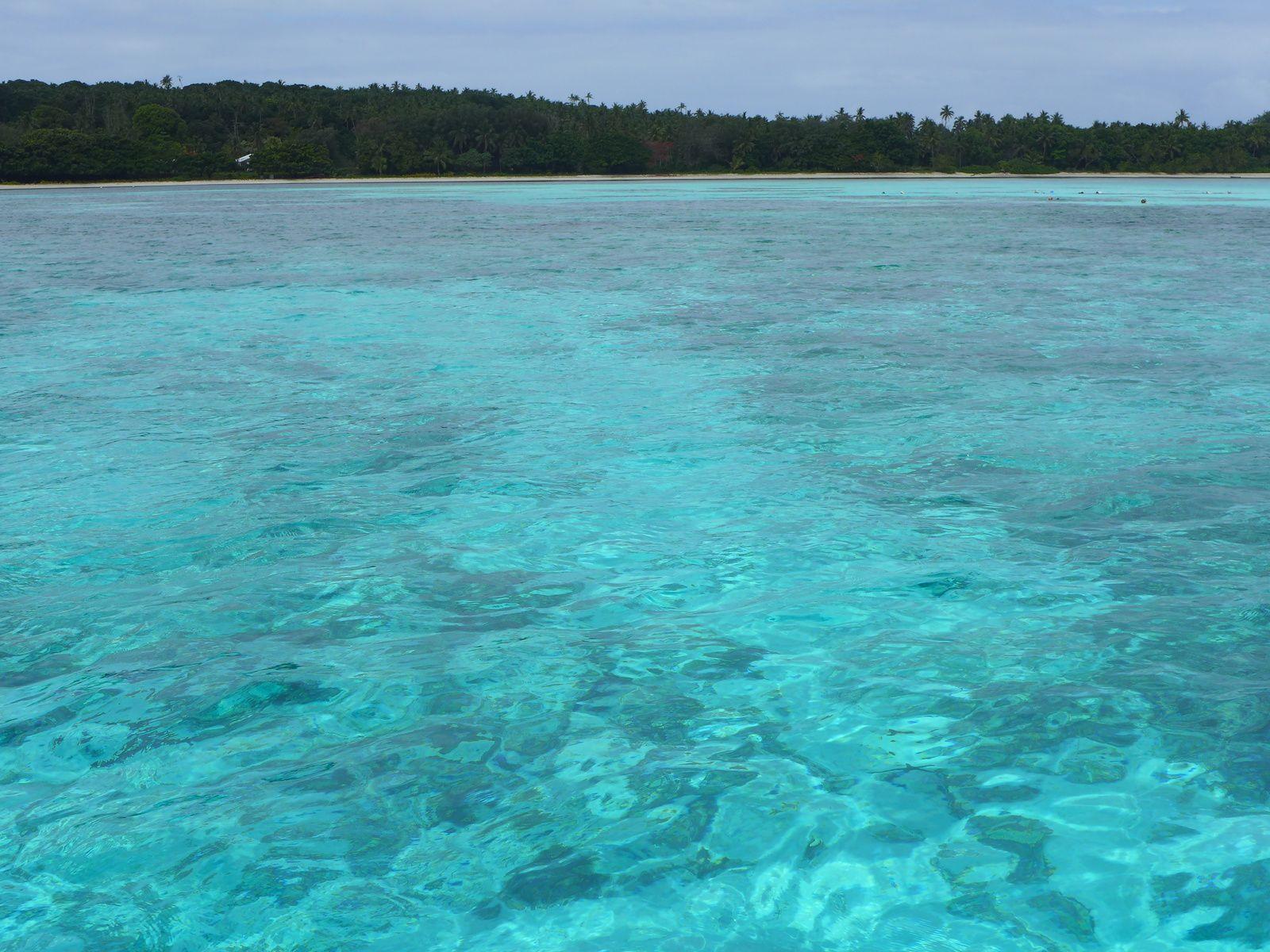 Au petit royaume des Tonga, cinquante nuances de bleu